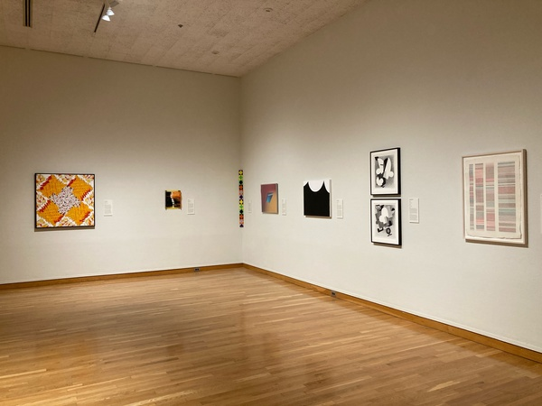 """""""Blurring Boundaries: The Women of American Abstract Artists 1936 - Present"""" travels to South Bend Museum of Art"""